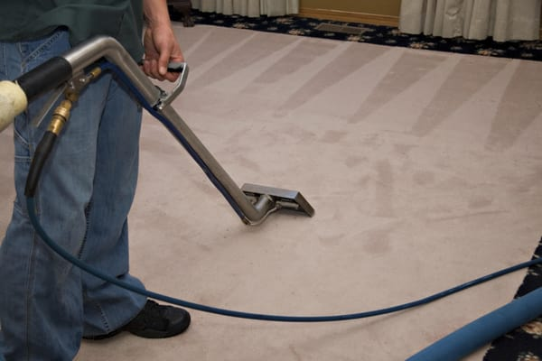 Importance of Steam Carpet Cleaning and Tips to Get Best Service