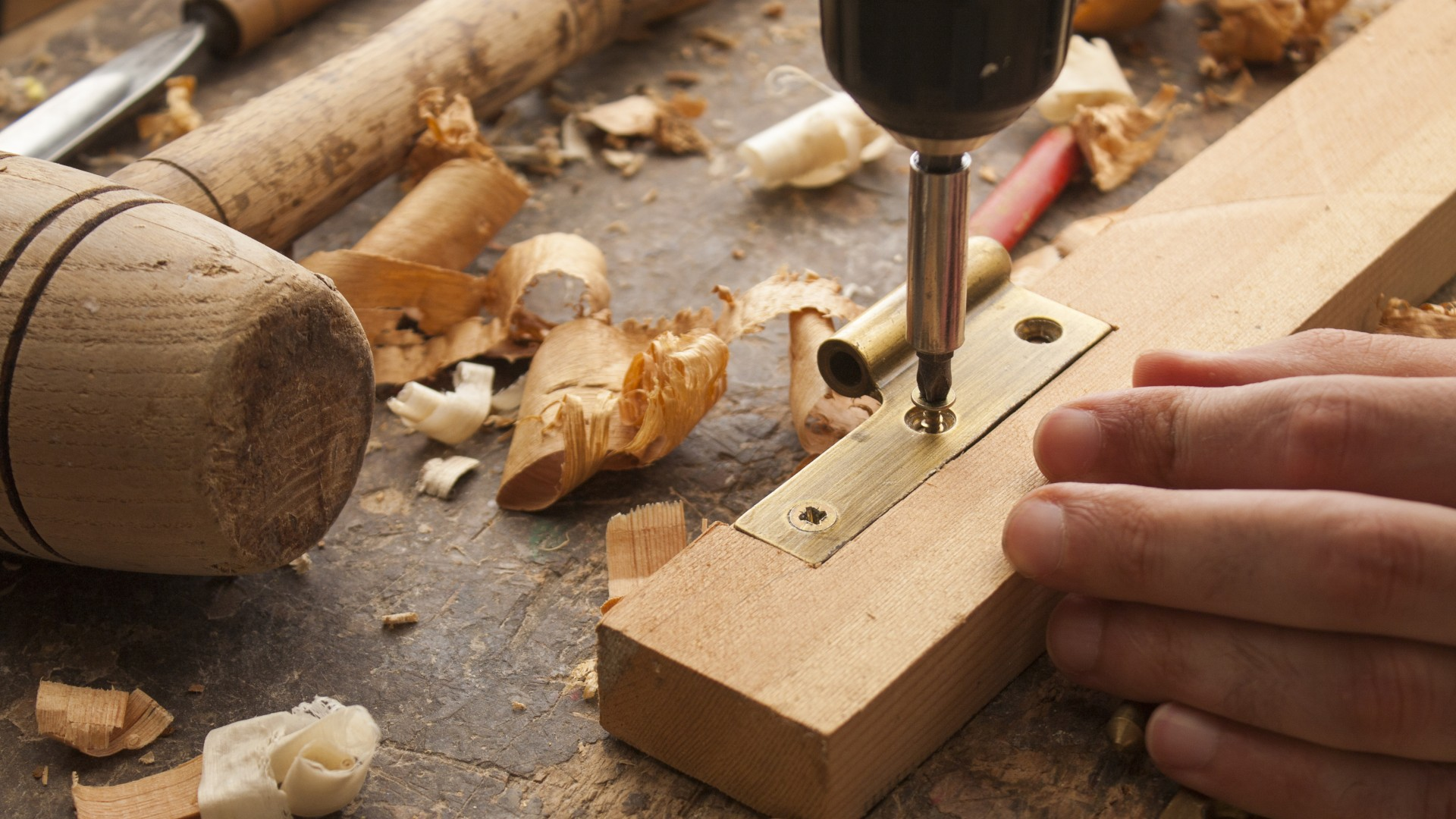 How Professional Carpenters can Help You with their Additions
