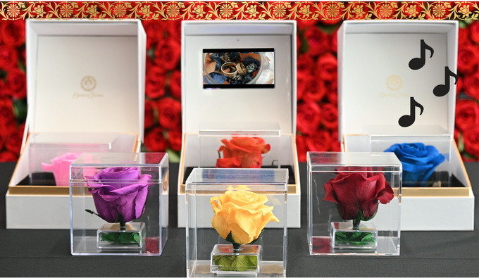 Preserved Roses are Best Gift for Interior Decoration